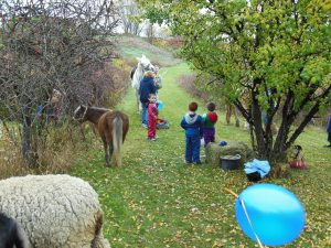 Pony rides were available for all the children, certainly a fun experience for the whole family.